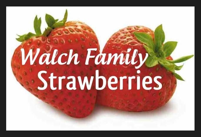 Walch Family Strawberries
